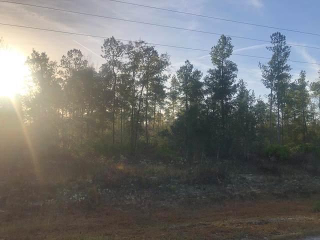0 Mount Pleasant Road, Gardi, GA 31546 (MLS #133500) :: RE/MAX All American Realty