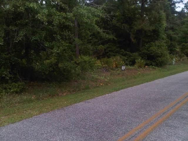 0 Seabreeze Drive, Meridian, GA 31319 (MLS #133503) :: RE/MAX All American Realty