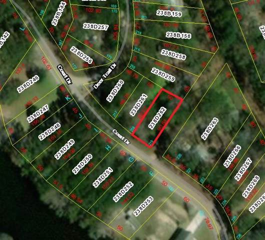 Lot 219 Court Drive, Midway, GA 31320 (MLS #133582) :: Coldwell Banker Southern Coast