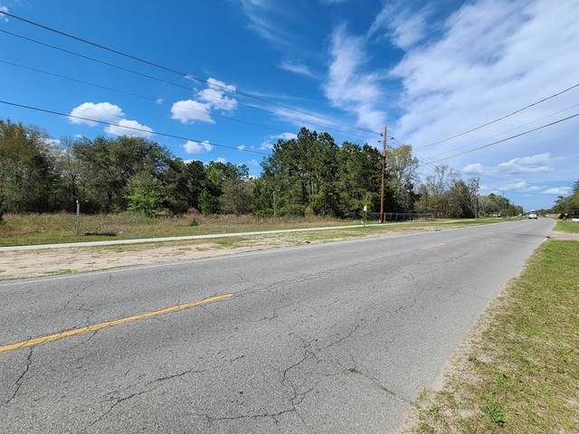2267 Shaw Road, Walthourville, GA 31333 (MLS #134150) :: Coldwell Banker Southern Coast