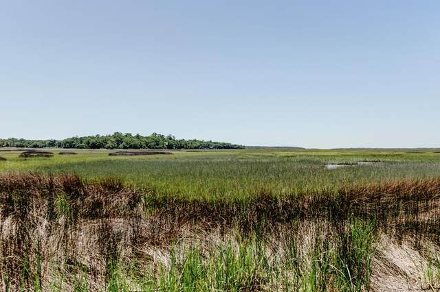 Lot 38 Coopers Point Drive, Townsend, GA 31331 (MLS #134515) :: Coldwell Banker Southern Coast