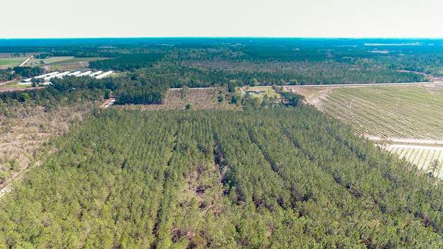 0 Old Dixie School Road, Alma, GA 31510 (MLS #134554) :: Coldwell Banker Southern Coast