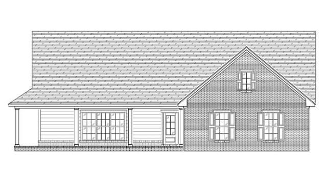 204 Old Hines Road, Flemington, GA 31313 (MLS #134612) :: Coldwell Banker Southern Coast