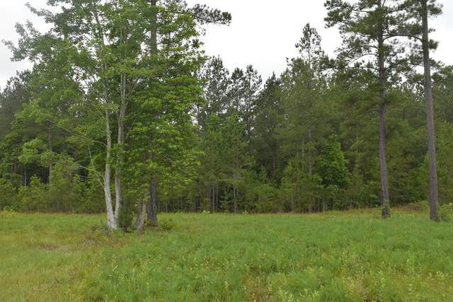 LOT 35 Cutters Gap Ne, Ludowici, GA 31316 (MLS #134656) :: Coldwell Banker Southern Coast