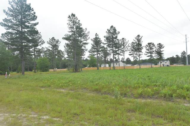LOT 40 Cutters Gap Ne, Ludowici, GA 31316 (MLS #134661) :: Coldwell Banker Southern Coast
