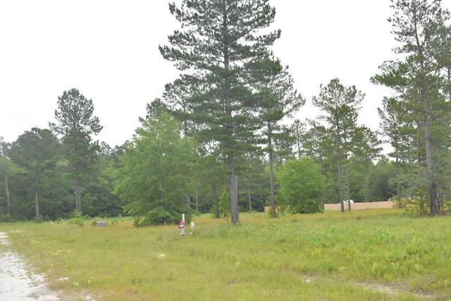 LOT 41 Cutters Gap Ne, Ludowici, GA 31316 (MLS #134662) :: Coldwell Banker Southern Coast