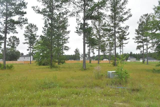 LOT 42 Cutters Gap Ne, Ludowici, GA 31316 (MLS #134663) :: Coldwell Banker Southern Coast