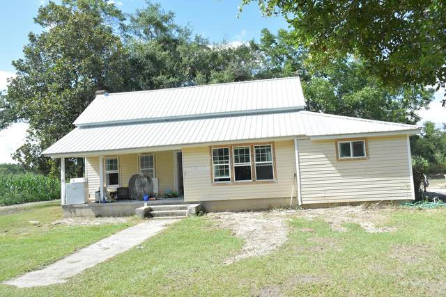 5961 Rye Patch Road Ne, Ludowici, GA 31316 (MLS #135070) :: Coldwell Banker Southern Coast