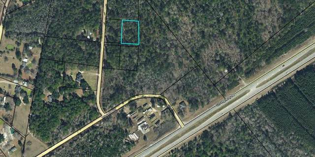 Lot 20 Anthony Drive Ne, Ludowici, GA 31316 (MLS #135264) :: Coldwell Banker Southern Coast