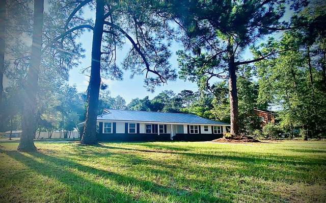301 Carlton Road, Jesup, GA 31546 (MLS #135418) :: Coldwell Banker Southern Coast