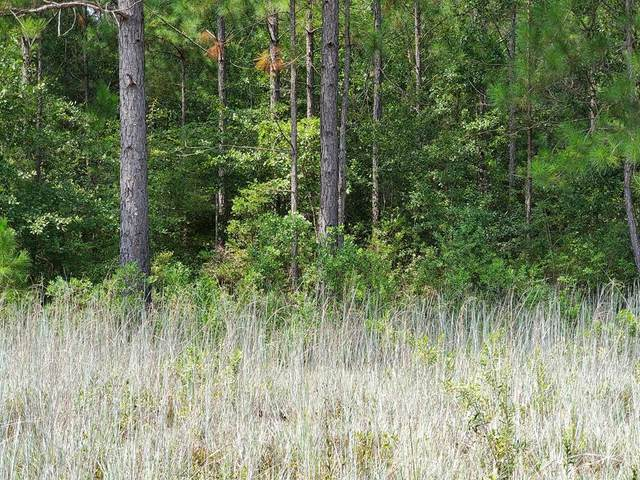 Lot 34 Whispering Pines Circle, Walthourville, GA 31301 (MLS #135435) :: Coldwell Banker Southern Coast
