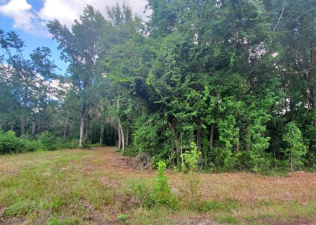 Lot 3 Sand Dollar Lane, Midway, GA 31320 (MLS #135444) :: Coldwell Banker Southern Coast