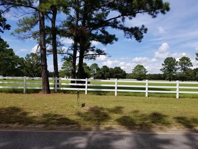 Lot 5 Lake Pamona Road, Midway, GA 31320 (MLS #135648) :: Coldwell Banker Southern Coast