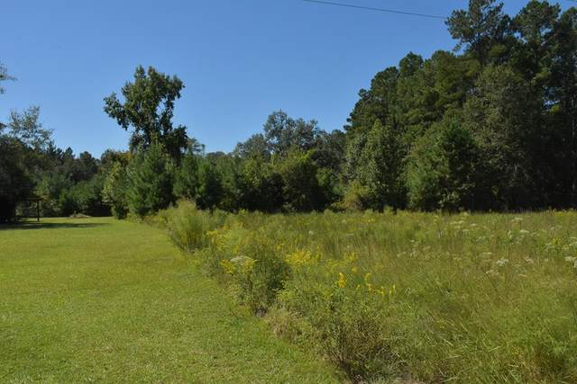3.5 AC Tom Williams Road Ne, Ludowici, GA 31316 (MLS #135987) :: Coldwell Banker Southern Coast