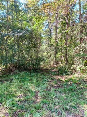 0 Cherokee Lake Road, Jesup, GA 31545 (MLS #135997) :: Coldwell Banker Southern Coast
