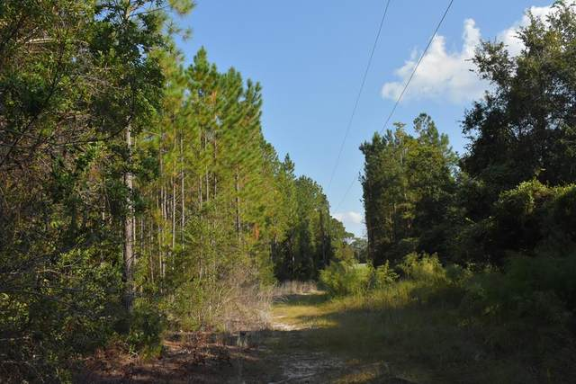 45 AC Kevin Road, Hinesville, GA 31313 (MLS #137095) :: Coldwell Banker Southern Coast