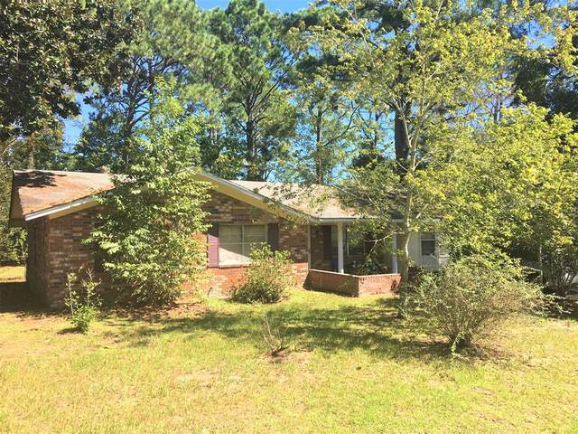 684 Mcdowell Road, Hinesville, GA 31313 (MLS #137204) :: Coldwell Banker Southern Coast