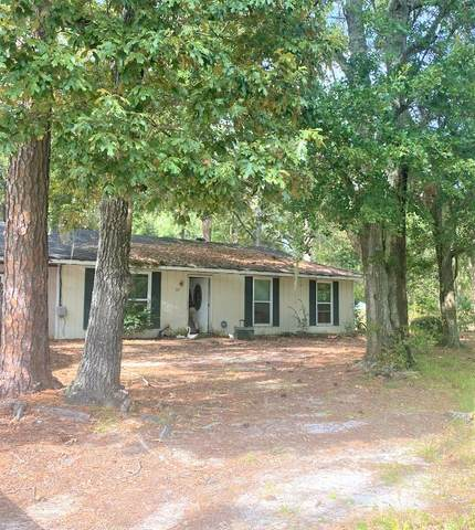 1027 Live Oak Drive, Hinesville, GA 31313 (MLS #137550) :: Coldwell Banker Southern Coast