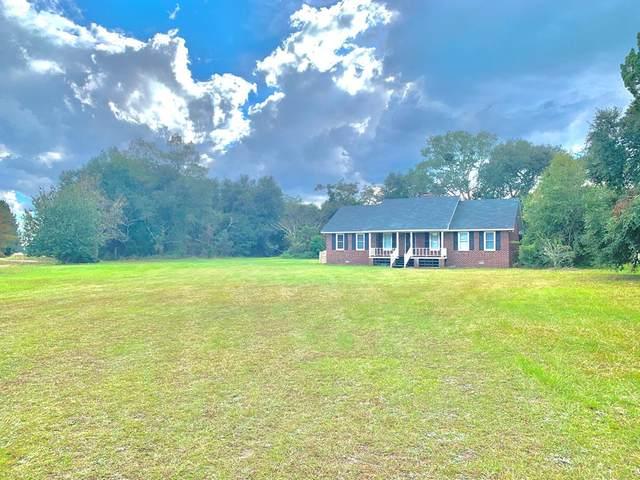 3507 Lanier Drive, Ludowici, GA 31316 (MLS #137552) :: Coastal Homes of Georgia, LLC