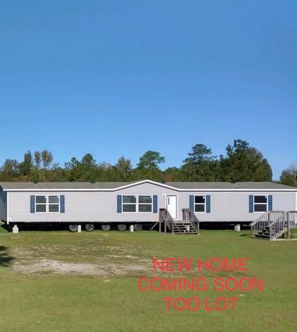 234 Quail Road, Ludowici, GA 31316 (MLS #137562) :: Coastal Homes of Georgia, LLC
