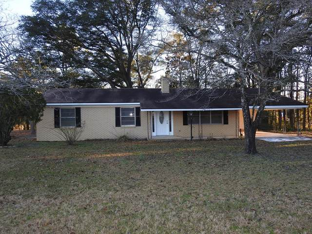 56 Lynntown Road, Collins, GA 30087 (MLS #137721) :: Coldwell Banker Southern Coast