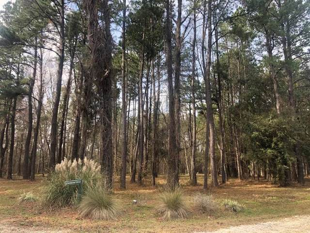 Lt 12 Black Cypress Drive, Darien, GA 31305 (MLS #138117) :: RE/MAX All American Realty