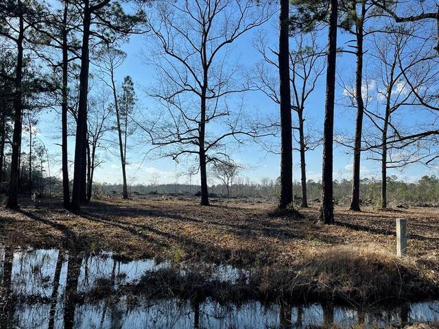 0 Rye Patch Road Ne, Ludowici, GA 31316 (MLS #138293) :: RE/MAX Eagle Creek Realty