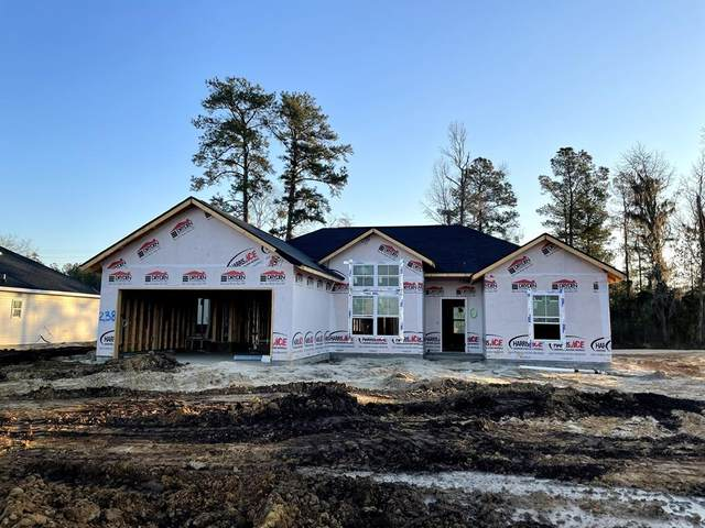 70 Rimes Avenue Se, Ludowici, GA 31316 (MLS #138304) :: RE/MAX All American Realty
