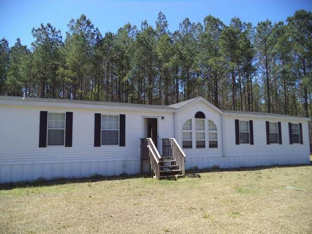 300 Marcus Nobles Road, Ludowici, GA 31316 (MLS #138349) :: RE/MAX All American Realty