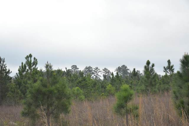 LOT 11 S. T. Morris Road, Ludowici, GA 31316 (MLS #138642) :: Coldwell Banker Southern Coast