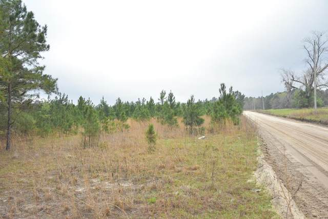 LOT 12 S. T. Morris Road, Ludowici, GA 31316 (MLS #138643) :: Coldwell Banker Southern Coast