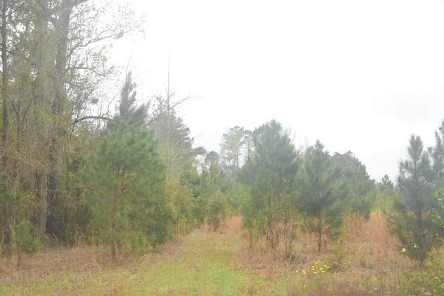 LOT 15 S. T. Morris Road, Ludowici, GA 31316 (MLS #138650) :: Coldwell Banker Southern Coast