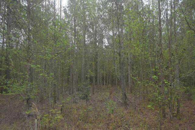 LOT 17 S. T. Morris Road, Ludowici, GA 31316 (MLS #138653) :: Coldwell Banker Southern Coast