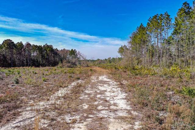 0 Fourth Street, Jesup, GA 31545 (MLS #138686) :: RE/MAX All American Realty