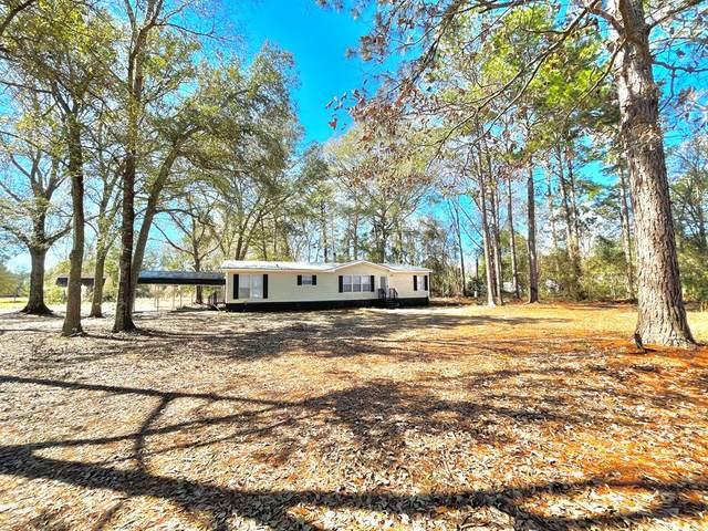 200 Moody Road, Ludowici, GA 31313 (MLS #138704) :: RE/MAX All American Realty