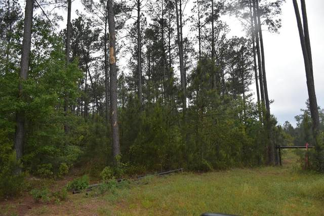 lot 3 Crossway Pines, Ludowici, GA 31316 (MLS #138770) :: Coldwell Banker Southern Coast