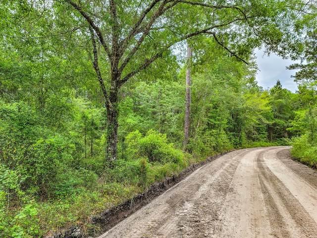 00 Hoke Circle, Nahunta, GA 31553 (MLS #138778) :: RE/MAX Eagle Creek Realty