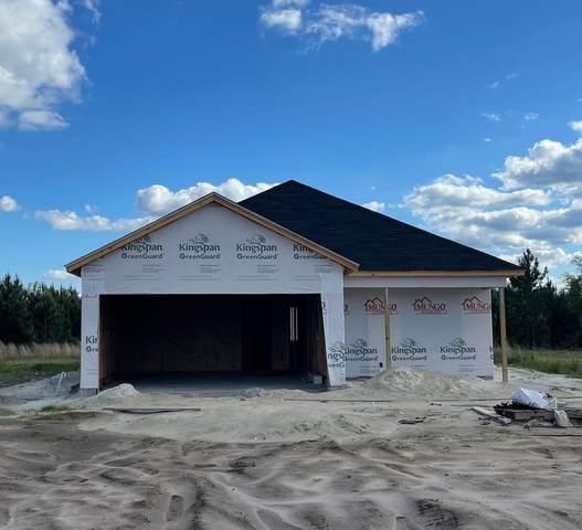 297 Tondee Way, Midway, GA 31320 (MLS #138900) :: Savannah Real Estate Experts