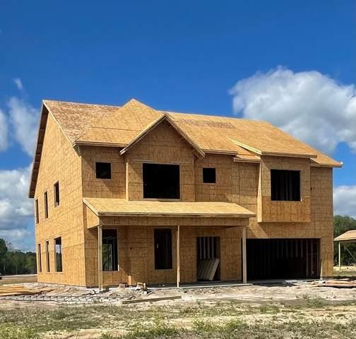 41 Gracyn Lane, Ludowici, GA 31316 (MLS #138962) :: Coldwell Banker Southern Coast