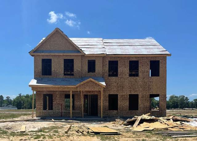 115 Akins Ranch Road, Ludowici, GA 31316 (MLS #138963) :: Coldwell Banker Southern Coast