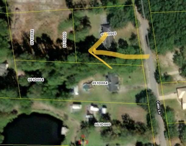 98 Cato Lane, Allenhurst, GA 31301 (MLS #139044) :: RE/MAX Eagle Creek Realty