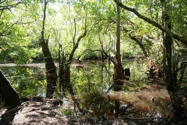 667 Sandy Run Road, Jesup, GA 31545 (MLS #139428) :: RE/MAX Eagle Creek Realty