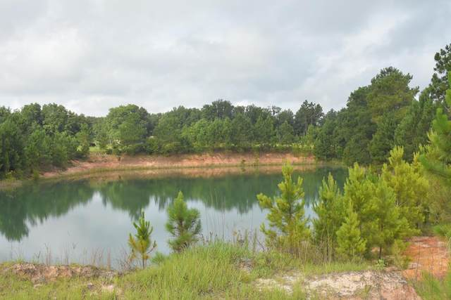 86 Acres Stafford Dairy Road Se, Ludowici, GA 31316 (MLS #139481) :: Coldwell Banker Southern Coast