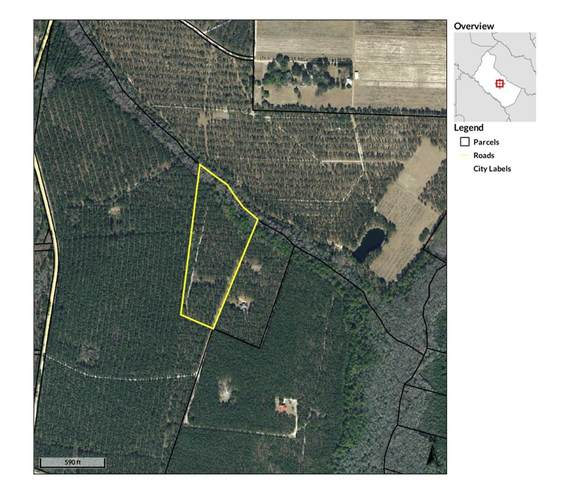 10 Acres Holly Hill Drive Se, Ludowici, GA 31316 (MLS #139862) :: Coldwell Banker Southern Coast