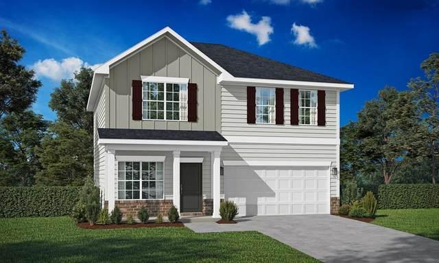 247 Morgan Field Boulevard, Ludowici, GA 31316 (MLS #139875) :: Coldwell Banker Southern Coast