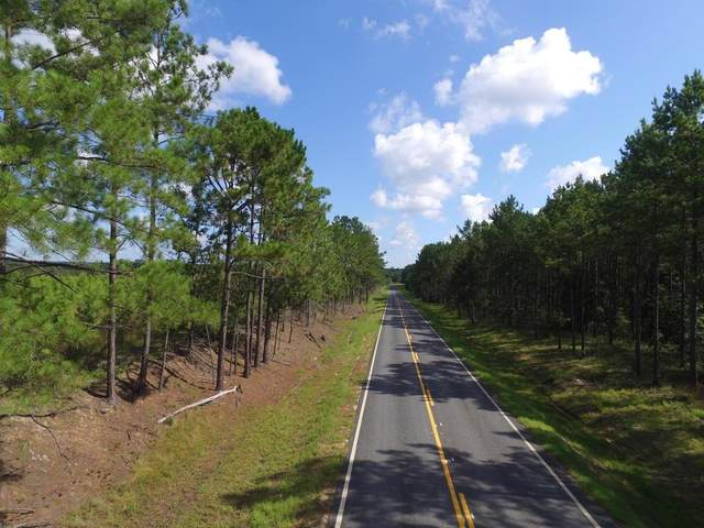 0 Horse Creek Road, McRae, GA 31055 (MLS #139905) :: Coldwell Banker Southern Coast