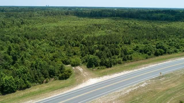 310 Lanes Bridge Road, Jesup, GA 31545 (MLS #139909) :: RE/MAX Eagle Creek Realty