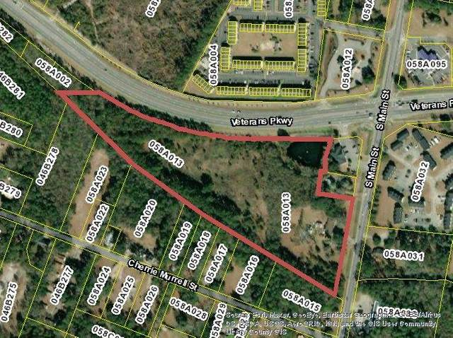 12.78 AC Veterans Parkway, Hinesville, GA 31313 (MLS #140045) :: Coldwell Banker Southern Coast