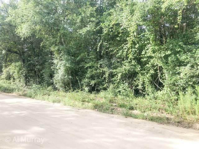 lot 9 Linden Drive, Jesup, GA 31545 (MLS #140222) :: Coldwell Banker Southern Coast