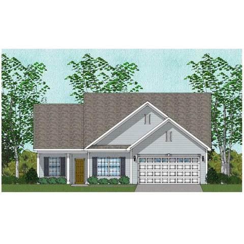 173 Akins Ranch Road Ne, Ludowici, GA 31316 (MLS #140531) :: Coldwell Banker Southern Coast